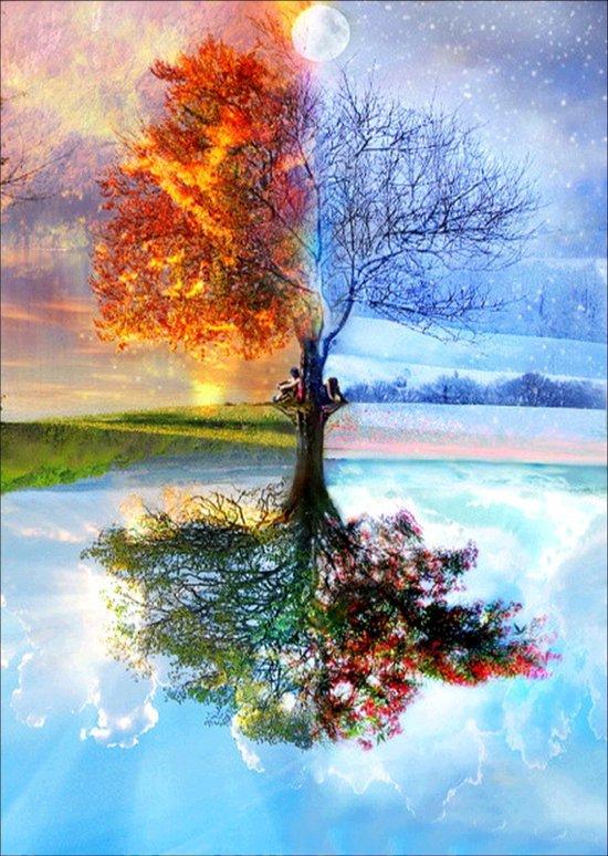 Afbeelding van Schilderen Op Nummer Volwassenen - Do It Yourself Paintings - Vier Seizoenen - Zomer - Lente - Herfst - Winter - Boom - Landschap - 40x50 cm - Canvas speelgoed