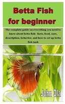 Betta Fish for beginner: The complete guide on everything you need to know about betta fish