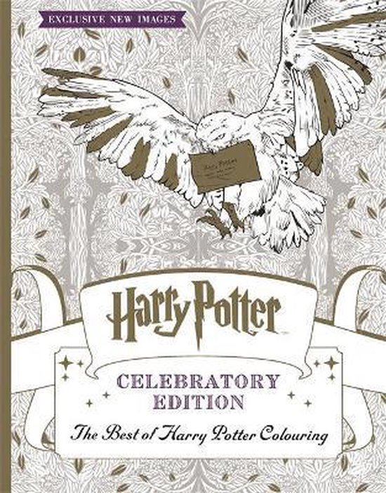 Boek cover Harry Potter Colouring Book Celebratory Edition van Warner Bros. Entertainment (Paperback)
