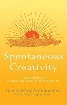 Spontaneous Creativity