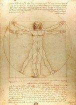 Leonardo Da Vinci poster Vitruvius lichaam tekening 61 x 91.5 cm.