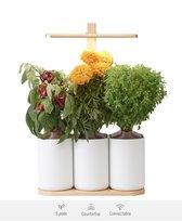 Lilo Edition, de indoor smart garden van Prêt à Pousser - Kweek heel het jaar door verse groenten, kruiden en bloemen (Aztec marigold, Spicy bush basil, Salad burnet, Mini chilli peppers, Mini red peppers)