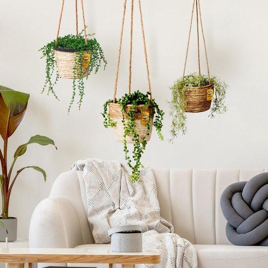 Plantenhanger 18x15cm Naturel   Hangende mand   Handgemaakt   Planten-houder / Hang-plant   Planten Accessoires   Hangmand