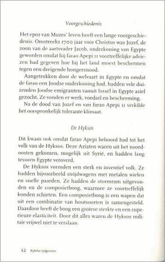 Boek cover Bijbelse Tijdgenoten van B. Smalhout (Hardcover)