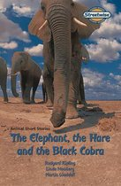 Streetwise The Elephant, The Hare and The Black Cobra Access