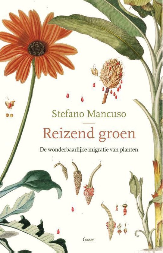 Reizend groen - Stefano Mancuso | Fthsonline.com