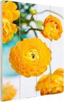 Oranje boterbloemen Hout 60x80 cm - Foto print op Hout (Wanddecoratie)