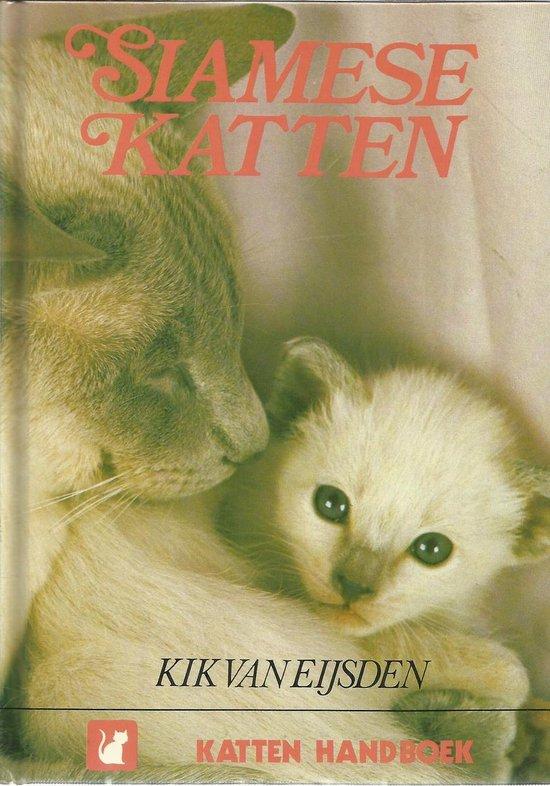 Siamese katten - Eysden |