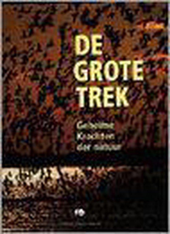 De grote trek - W. Spielhagen | Fthsonline.com