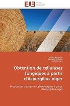 Obtention de Cellulases Fongiques � Partir d'Aspergillus Niger