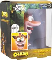 Crash Bandicoot - Crash Bandicoot Icon Light MERCHANDISE