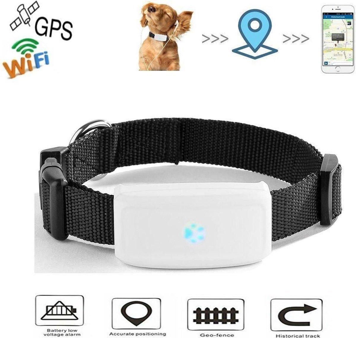Huisdieren GPS-tracker   Anti Lost For Dogs Katten   Met kraag   Outdoor Navigation Locator Gratis A