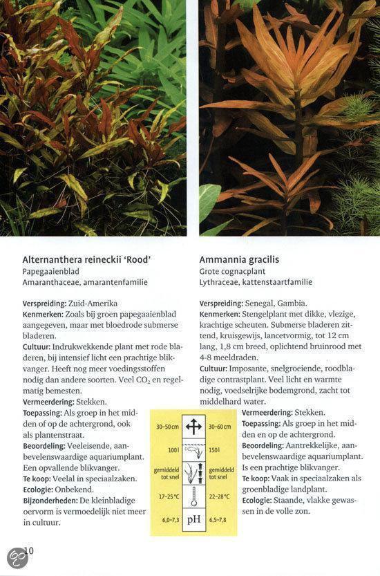 Aquariumplanten van A-Z - Christel Kasselmann