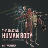 The Amazing Human Body Anatomy and Physiology