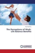 The Perceptions of Work-Life Balance Benefits