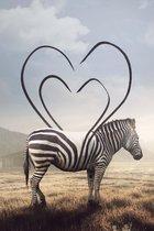 Heart Striped Zebra op Geborsteld Aluminium | Staand 100 x 150 cm | Dieren schilderijen | Wanddecoratie voor binnen en buiten | Zebra op Dibond met Butler Finish