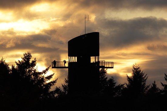 Afbeelding van het spel Escapegame: Het Geheim Van De Bosbergtoren