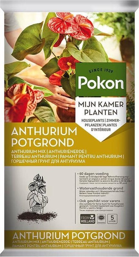 Pokon RHP Anthurium Grond - 5L