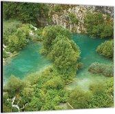 Dibond –Bomen in het Water– 80x80 Foto op Aluminium (Wanddecoratie van metaal)