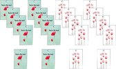 cadeaulabel - minikaartjes - gift tag - thank you - you're the best - klaprozen - poppies -  lief