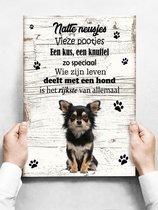 Wandbord Hond: Chihuahua - 30 x 42 cm