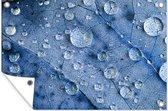 Druppels op een blauw blad 60x40 cm