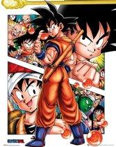 GBeye Dragon Ball Collage Poster 40x50cm