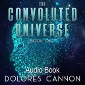 The Convoluted Universe, Book One