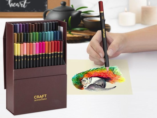 Afbeelding van Professionele kleurpotloden in luxe opbergdoos - 48 stuks  Kleurpotloden voor volwassenen