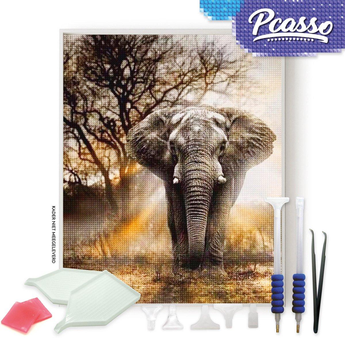 Pcasso ® Olifant Wild - Diamond Painting - Incl. Veel Diamond Painting Accessoires - Diamond Painting Kinderen - Diamond Painting Dieren - Diamond painting volwassenen - 30x40 CM