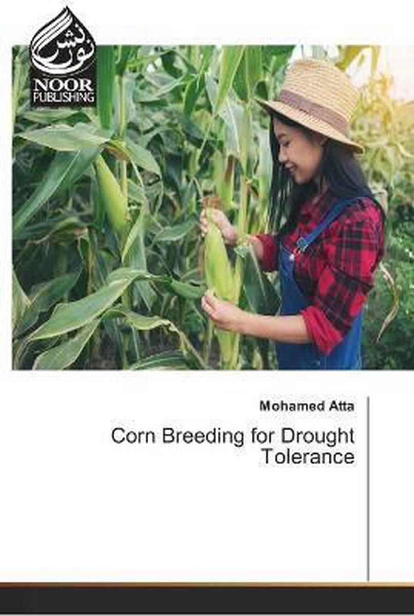 Corn Breeding for Drought Tolerance