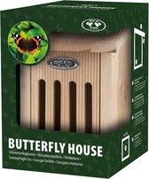 Vlinderkast in Giftbox