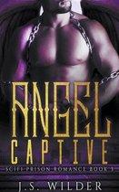 Angel Captive