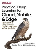 Practical Deep Learning for Cloud and Mobile