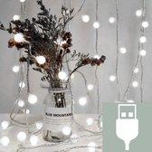 Lichstnoer voor Buiten - LED Lampjes Slinger  - 5 Meter - 50 LED Lampjes - Tuinverlichting met Wit Licht - Lichtsnoer met USB Aansluiting - Tuindecoratie en Binnen