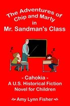 The Adventures of Chip and Marty in Mr. Sandman's Class