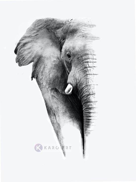 Schilderij - Olifant op witte achtergrond