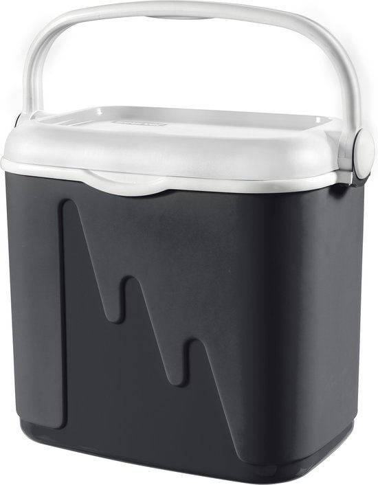 Curver Koelbox - 32L - antraciet