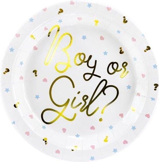 Gender Reveal Borden 23cm 6 stuks   Boy or Girl?
