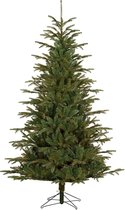 Black Box Treeskerstboom Nebraska H215D132 Blauw Tips 1572
