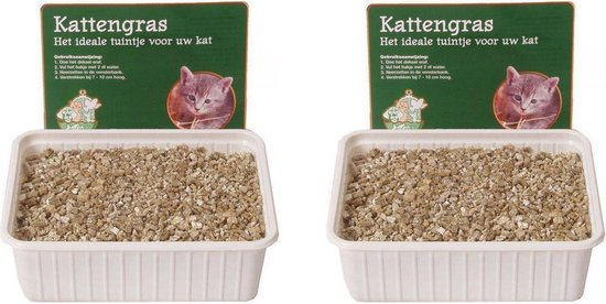 Kattengras zaadjes per 2 dozen