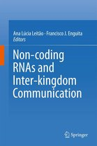 Non-coding RNAs and Inter-kingdom Communication