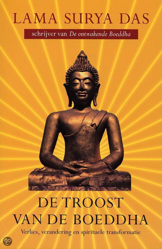 De troost van de Boeddha - Richard Dooling |