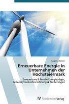 Erneuerbare Energie in Unternehmen der Hochsteiermark