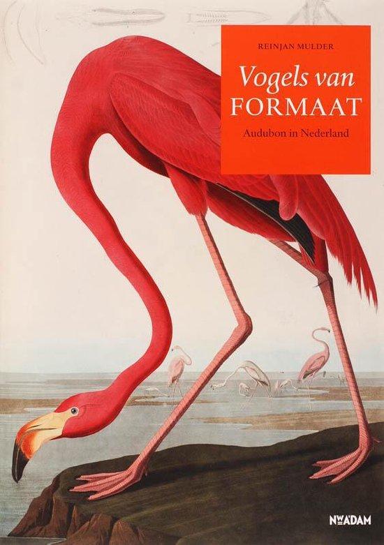 Vogels Van Formaat - Rein J. Mulder  