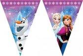 Frozen vlaggenlijn kinderfeestje 2 meter