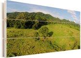 Knalgroen landschap in het Nationaal park Alas Purwo in Indonesië Vurenhout met planken 80x40 cm - Foto print op Hout (Wanddecoratie)