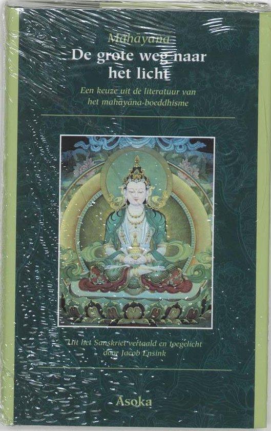 Cover van het boek 'De grote weg naar het licht'