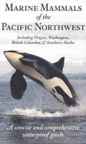 Marine Mammals of the Pacific Northwest