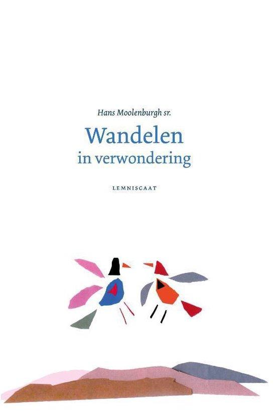 Wandelen in verwondering - Hans Moolenburgh Sr. | Fthsonline.com